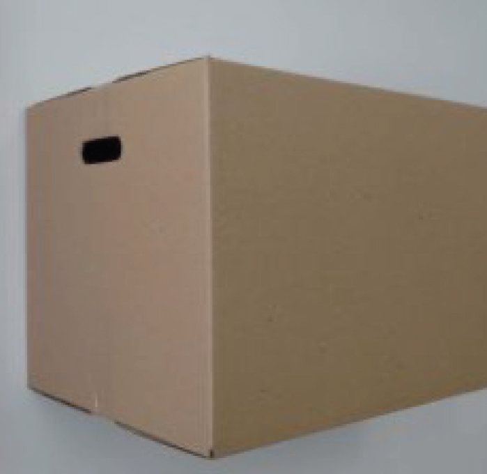 Medium storage box with handles